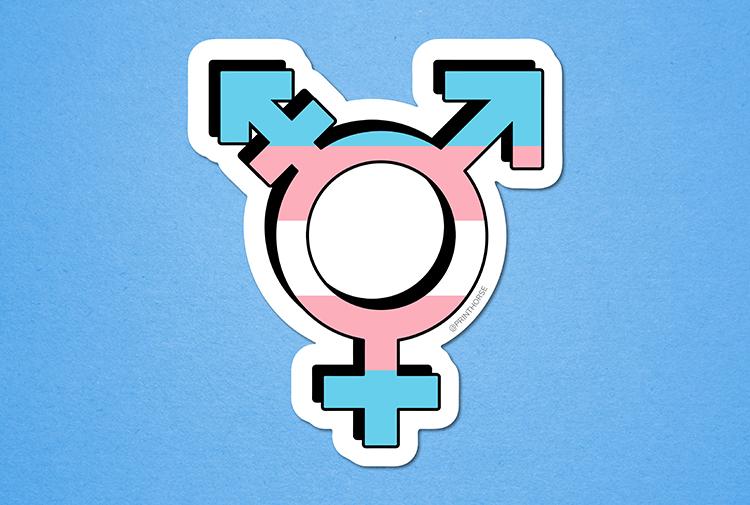 Transgender Sports Bill in Florida